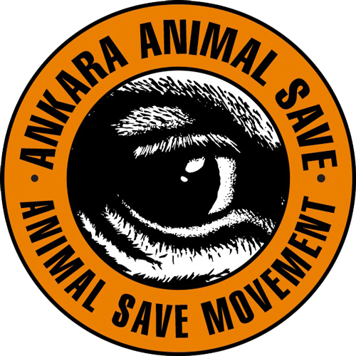 Ankara Animal Save